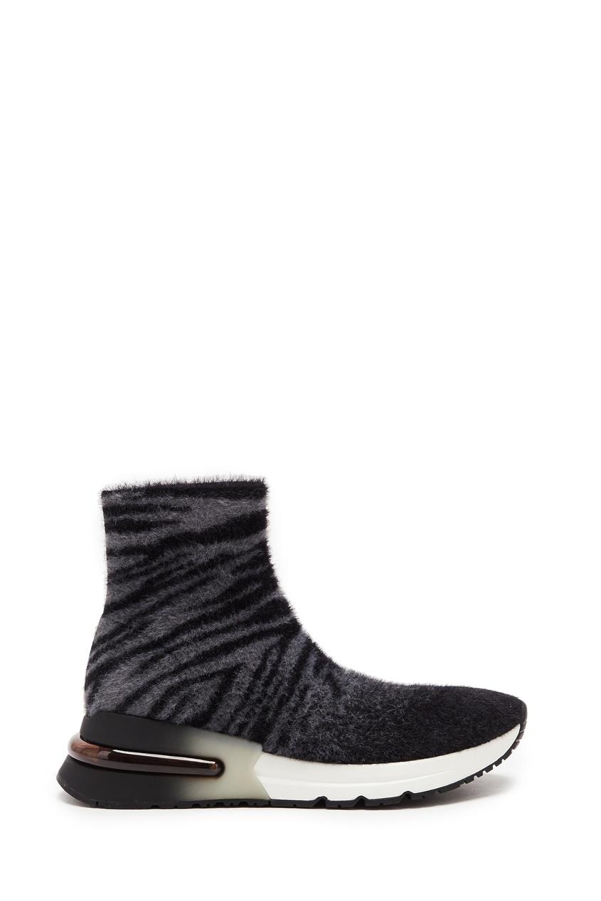 женские носки ash