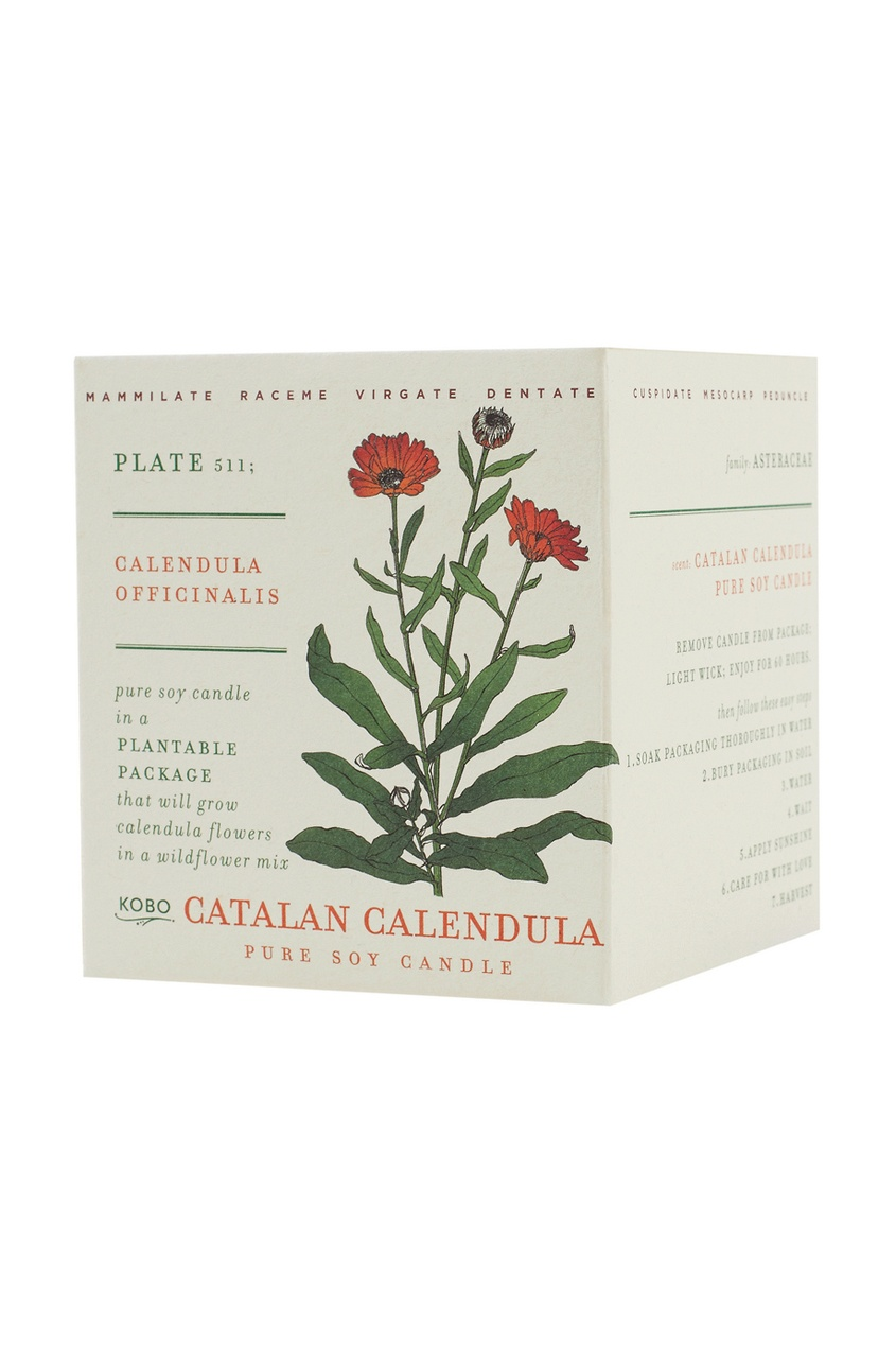 Kobo Candles ������������� ����� Catalan Calendula 240��.