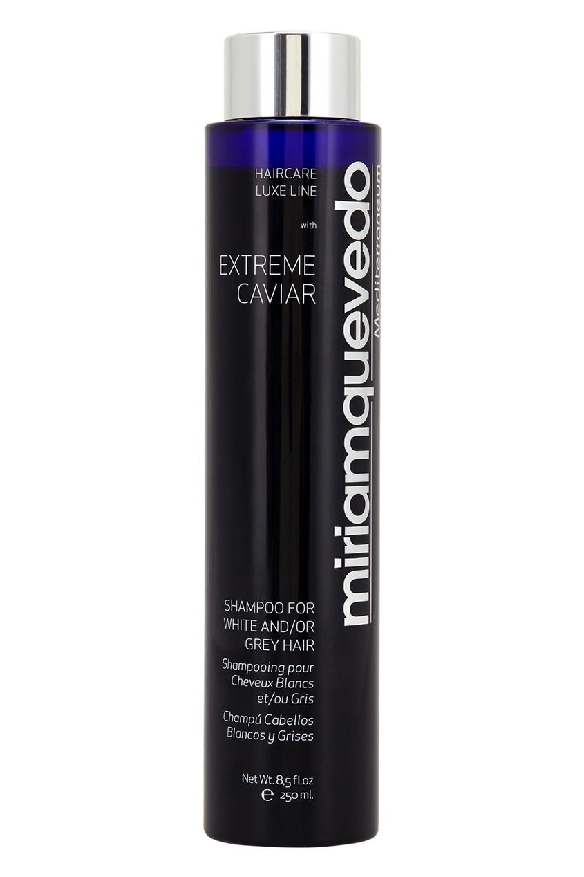 Miriamquevedo Шампунь для светлых или седых волос с экстрактом черной икры Extreme Caviar For White & Grey Hair, 250ml miriamquevedo солнцезащитный спрей для волос экстрактом черной икры extreme caviar hair spray solar 250ml