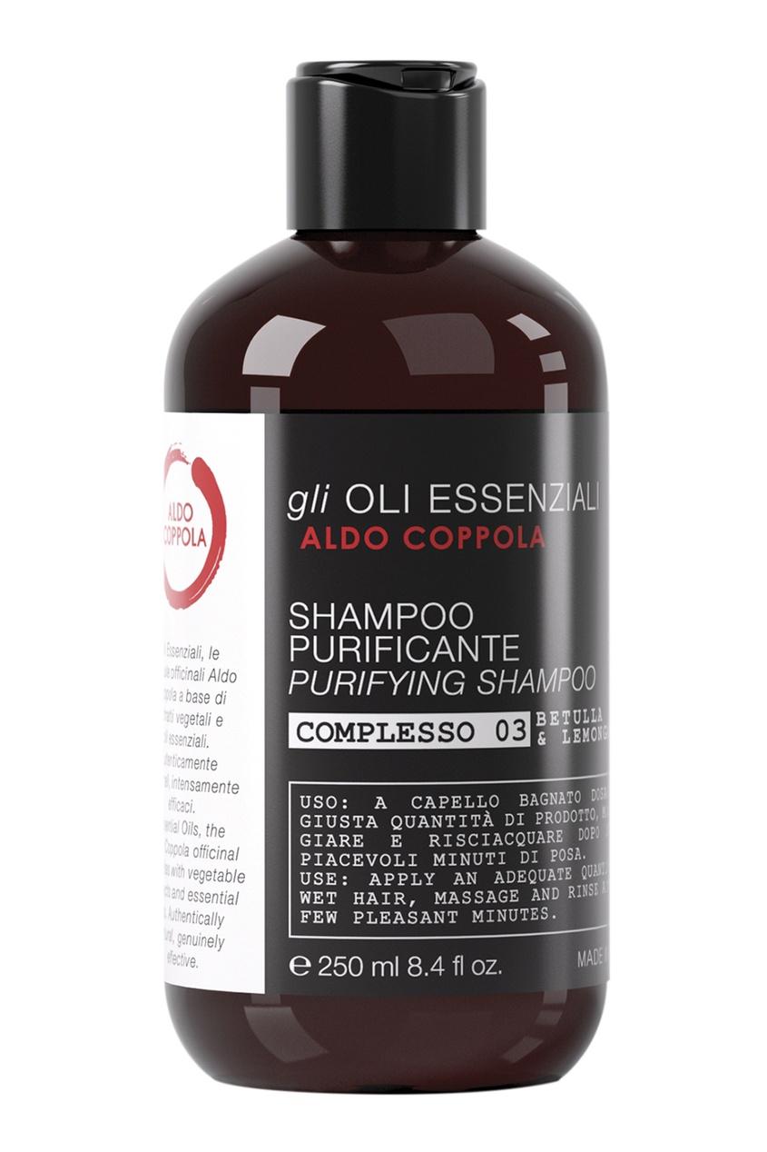 Очищающий шампунь Purifying Shampoo, 250ml
