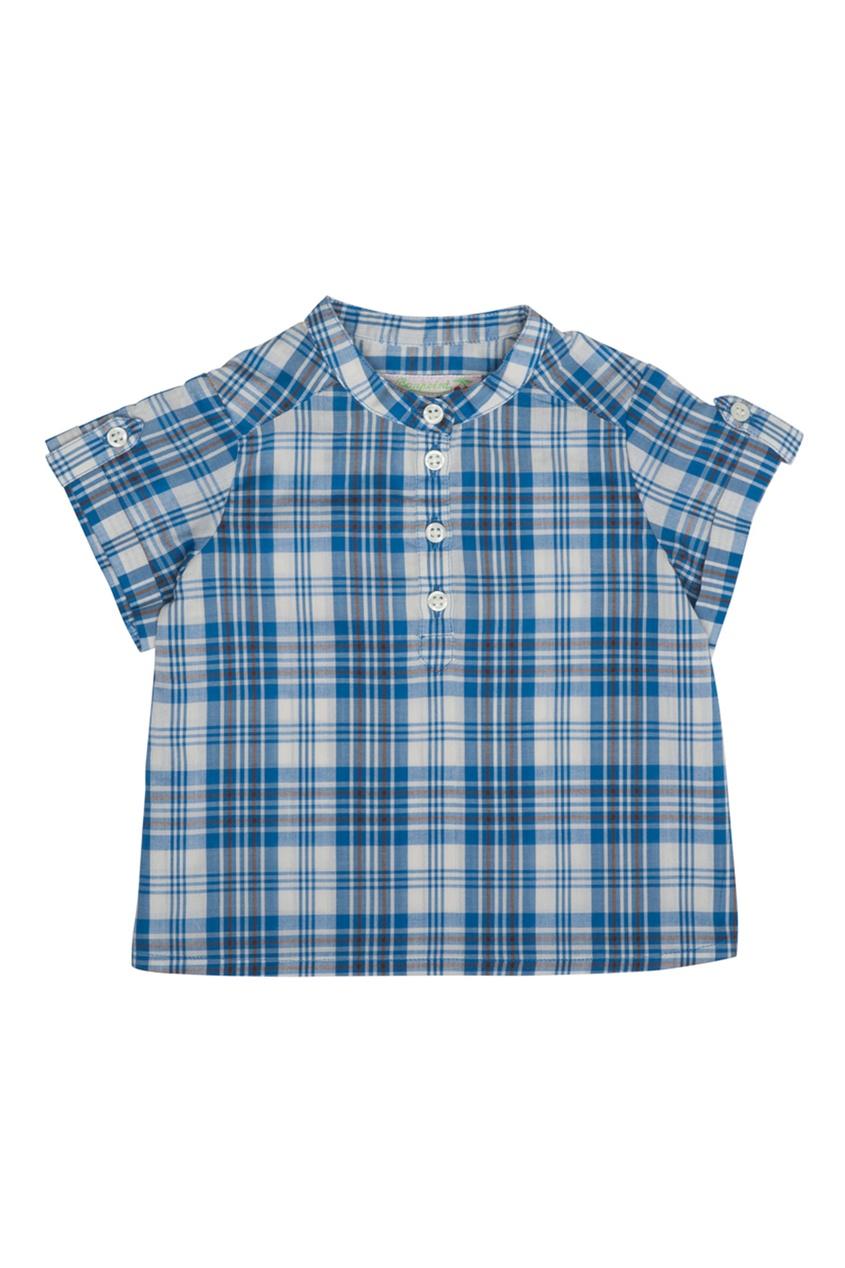 Хлопковая рубашка Emilio от AIZEL