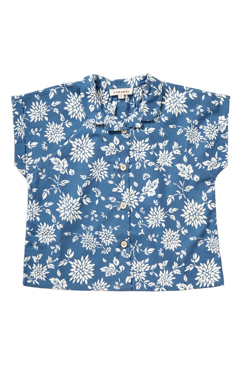 Хлопковая блузка Sorrel