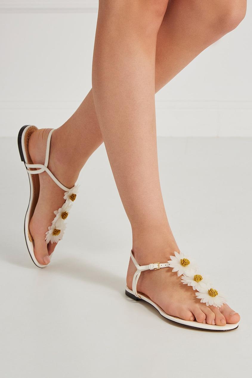 Кожаные сандалии Posey