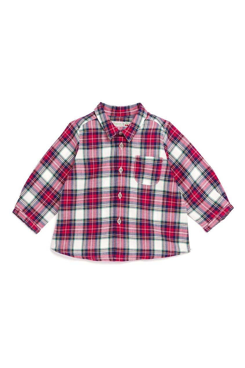 Bonpoint Рубашка MALO рубашка topman topman to030embbqq4