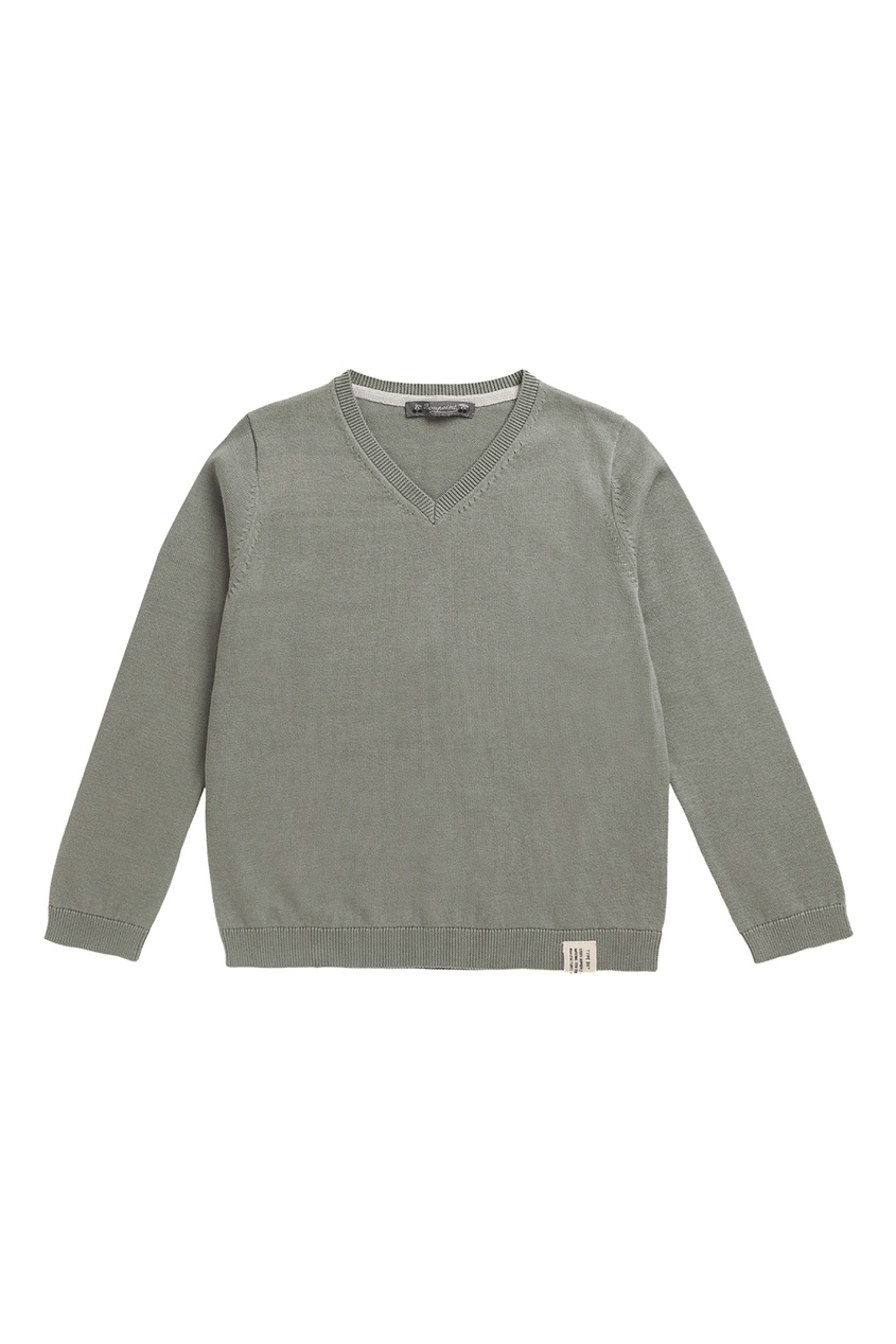 Купить Бледно-зеленый пуловер зеленого цвета