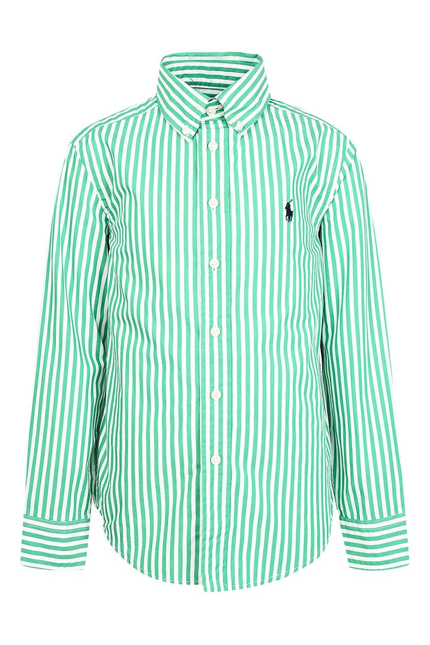 Купить Бело-зеленая рубашка от Ralph Lauren Kids цвет multicolor